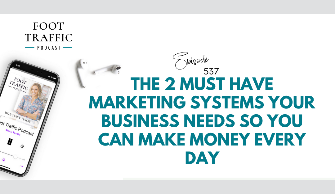 The 2 Must Have Marketing Systems Your Business Needs so You Can Make Money Every Day